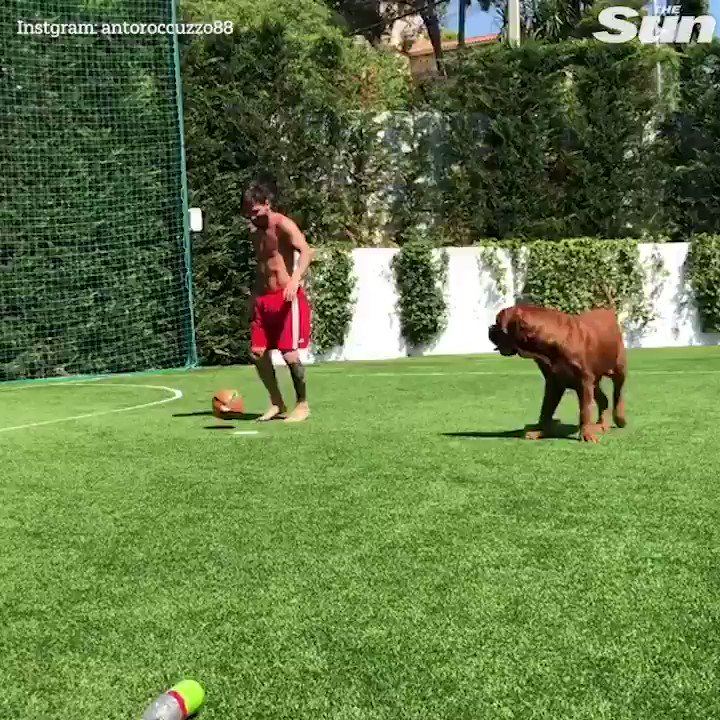 RT @TheSunFootball: Confirmed: No man nor mammal can get near Lionel Messi???????? https://t.co/t21E90f7TL