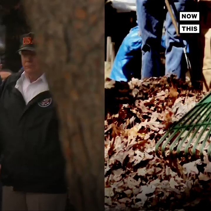 President Trump erroneously suggested raking the forest floors could've prevented the lethal California wildfires, and made other bizarre, inexplicable comments https://t.co/xQGcmPYqhN