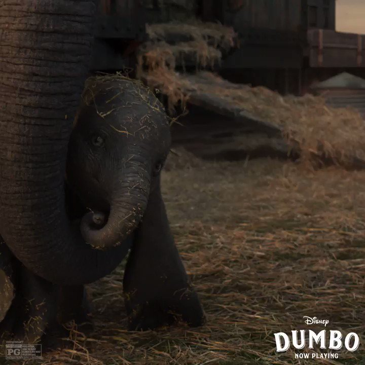 RT @Dumbo: Have you met the newest performer? See #Dumbo soar in theatres now. https://t.co/wkMCnQcFWM