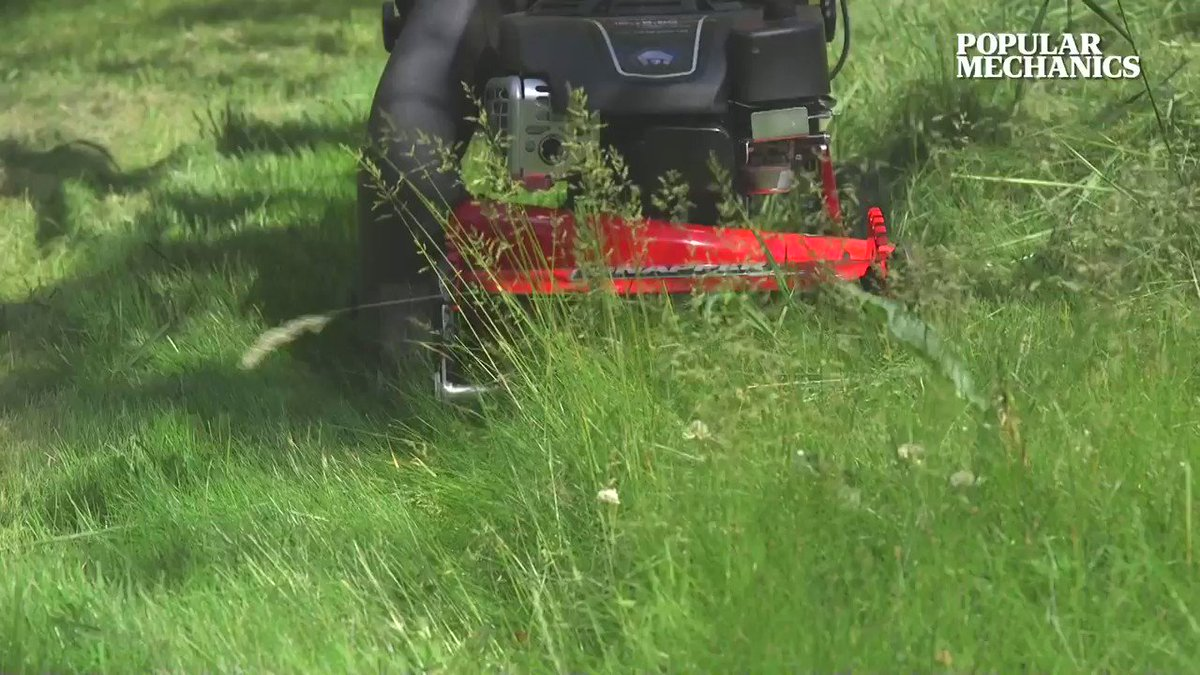 Everyone's familiar with the problem of your lawn just getting out of control.
