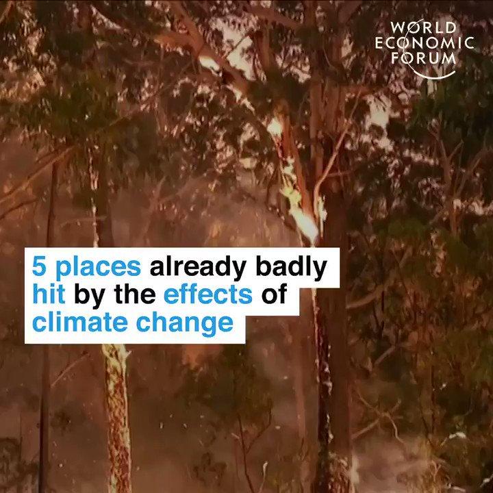 Have you been affected where you are?  By @wef #wef20 #howtosavetheplanet #ClimateEmergency #ClimateCrisis   @69christo @crjaensch @AshokNellikar @jrzaranoid @steffanoferrari @HeinzVHoenen @labordeolivier @mvollmer1 @nomoreslaves