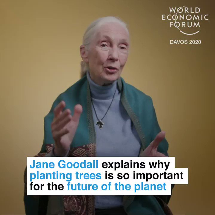 """""""A cumulative effort of millions and billions of people making ethical choices.""""  📕 Read more:  #howtosavetheplanet #wef20 @janegoodallinst @Roots_Shoots @it_org"""