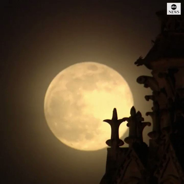 Supermoon shines through belltowers of Notre Dame Cathedral in deserted Paris.