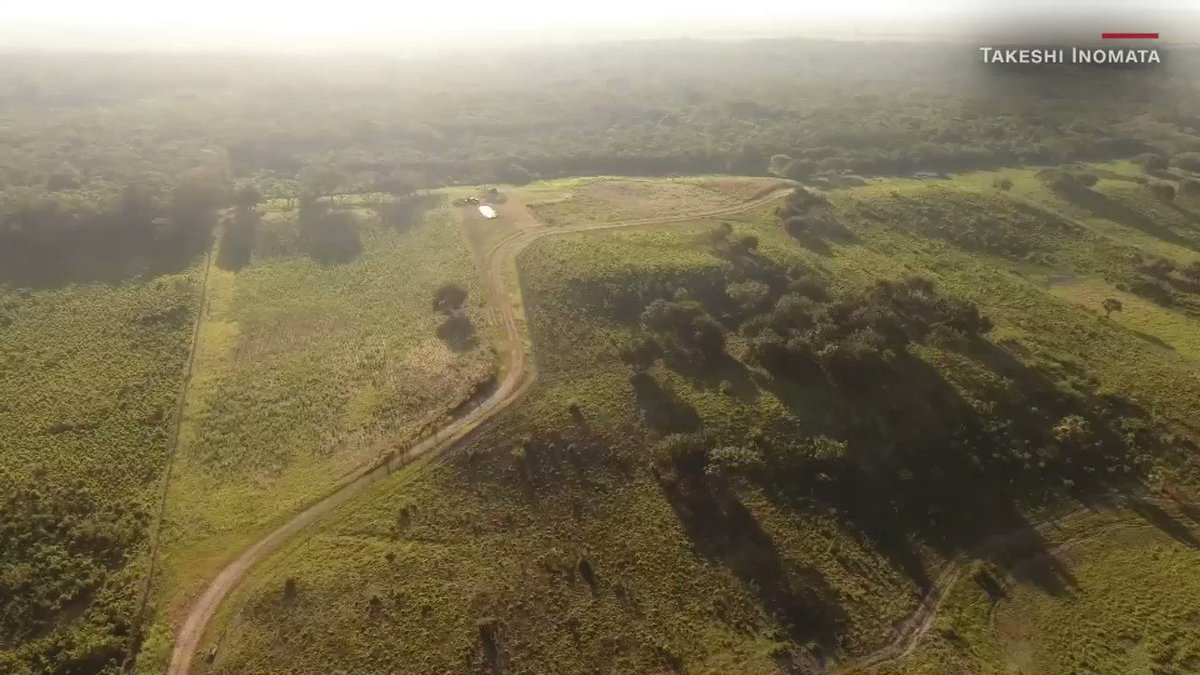 Laser mapping is increasing the speed and scale of archeological discoveries and has now revealed the earliest and largest ceremonial structure ever built by the Maya — covering more ground than the Great Pyramid at Giza, Egypt