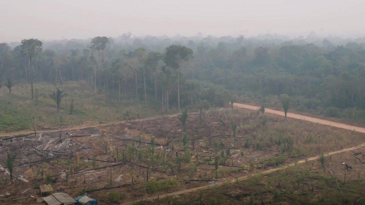 O quarto episódio de Amazônia, O Código da Vida mostra a importância da Amazônia como equilíbrio global. CNN Séries Originais com Evaristo Costa. Todos os domingos, às 19h: