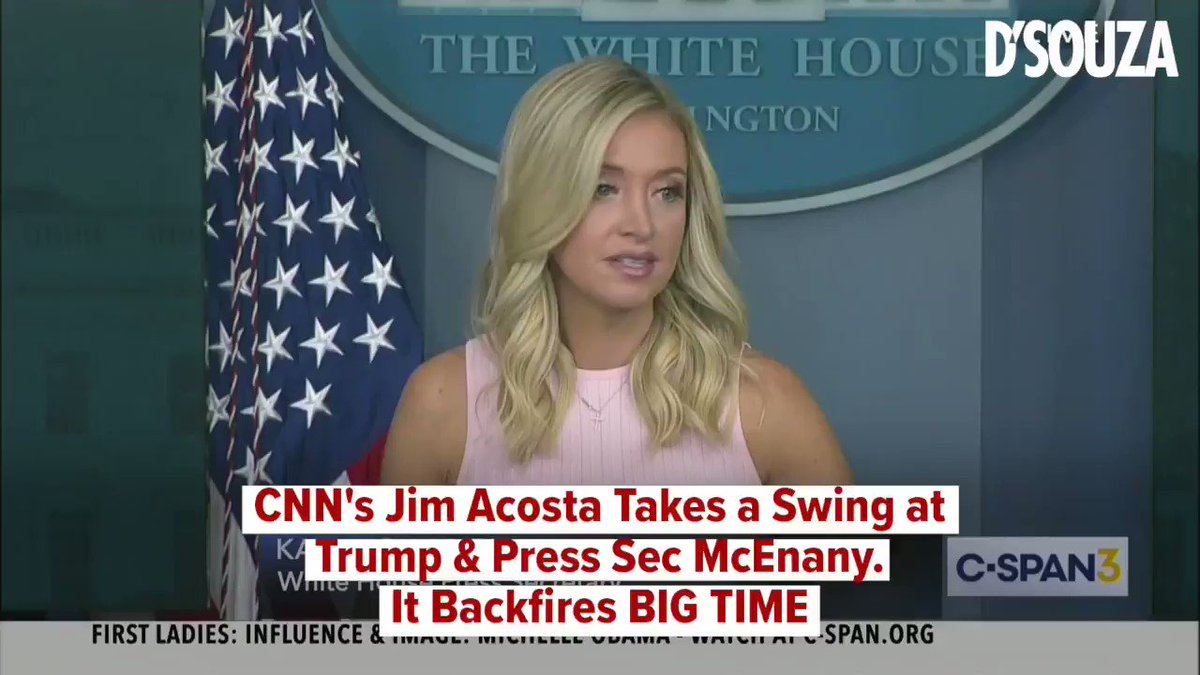 CNN's Jim Acosta may not be a very good journalist, but he is an EXPERT at making a fool of himself.