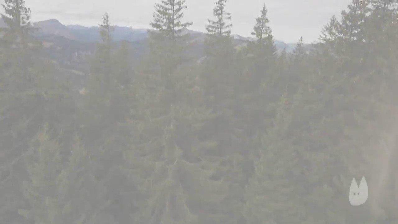Am #RiedbergerHorn soll ein Biotop einem Sklilift weichen. #Alpenplan #Naturschutz #Bayern https://t.co/xOkVEl0u0x