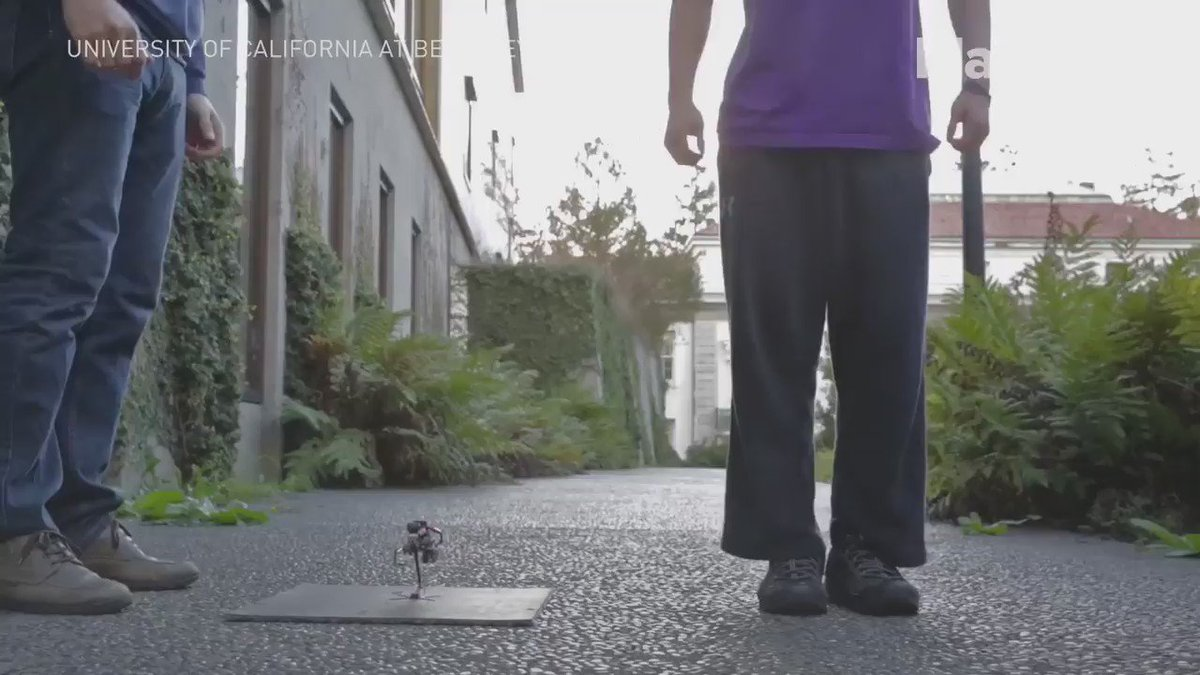 This tiny robot can jump better than you https://t.co/MPzkFbBqIf