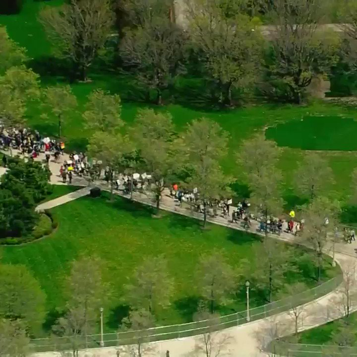 Video shows crowds at the March for Science in Chicago from above