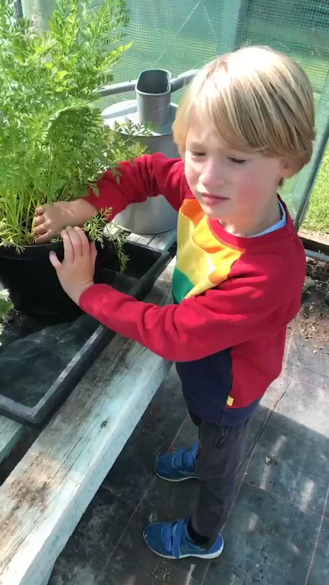 Who else left feeling inspired by Jamie & Buddy to grow their own fruit & veg? ???????? #NationalAllotmentWeek https://t.co/M501vX91AT
