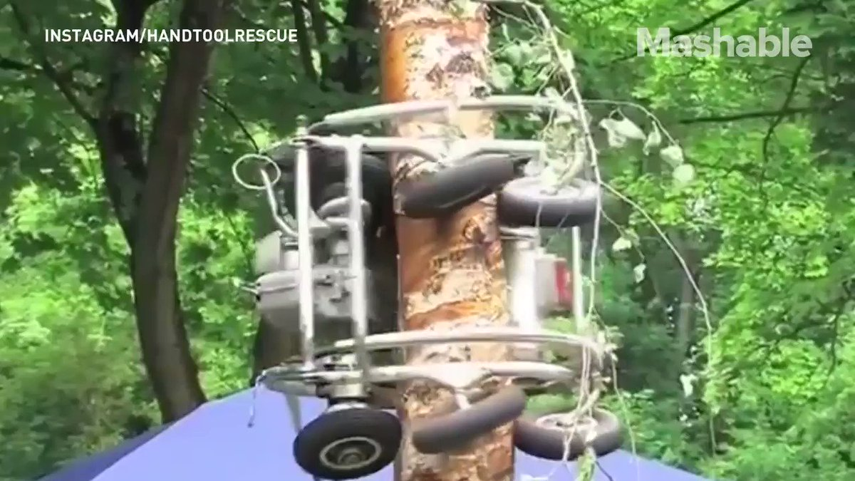 This tree trimmer was homemade and moves all on its own https://t.co/ALg9mkR3a1
