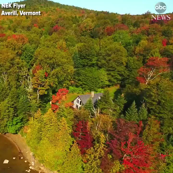 Drone footage captures early fall colors on display around Little Averill Pond in Vermont. https://t.co/32GXPYkkag https://t.co/AhflMwxvQg