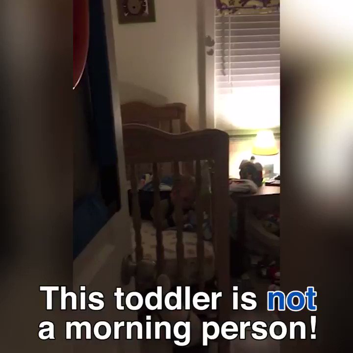 This toddler is all of us in the morning ��  via @DailyMail https://t.co/QqfByKeyY7 https://t.co/RIhQAgDstD