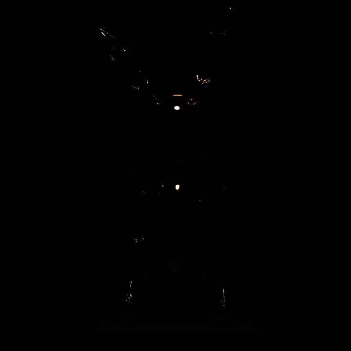 #LVxKoons:ジェフ・クーンズ@JeffKoons とのコラボレーションによる「MASTERSコレクション」の新作は間もなく公開! https://t.co/OhA5r4QhUj https://t.co/Xq4O5K9168