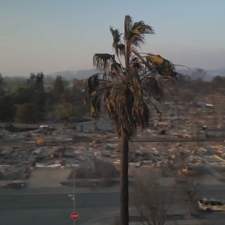The Northern California fires have consumed an estimated 160,000 acres and 3,500 structures https://t.co/pCkl3INNLZ https://t.co/tYUaWJlyxn