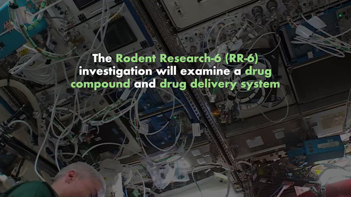 Living & working in space takes a toll on the human body. Learn about this @ISS_Research aboard the @Space_Station that tests a drug delivery system aimed at preventing, slowing or even reversing muscle atrophy, in space and on Earth! Watch: https://t.co/m5RwsKq6C1 https://t.co/eyEV2FskPB