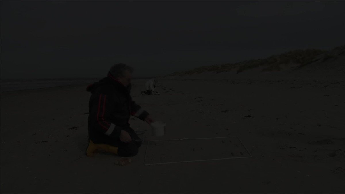 Volunteers in England try gauging the scale of the plastic pollution problem in oceans https://t.co/3DZMTkf2GE https://t.co/hdDjVgAkap