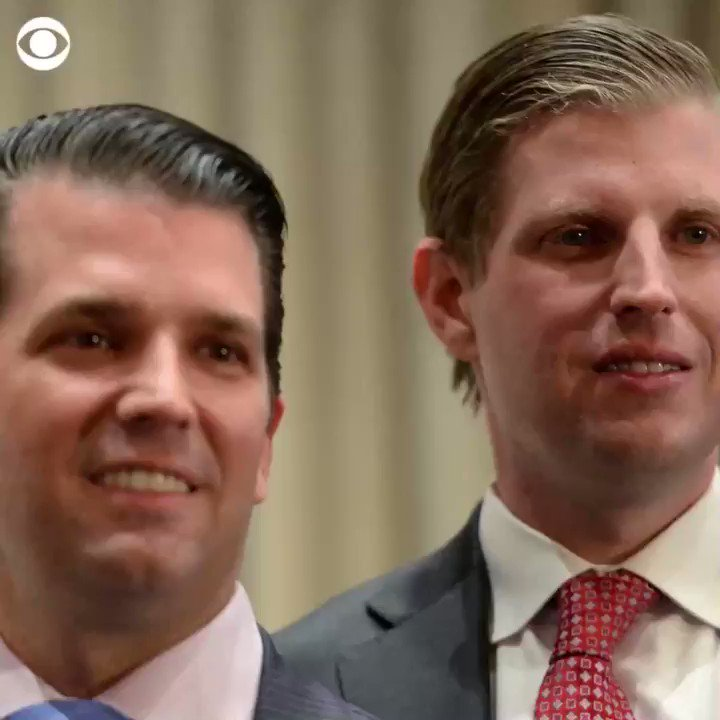 The Trump brothers' business trip to Dubai just cost taxpayers $73,000.
