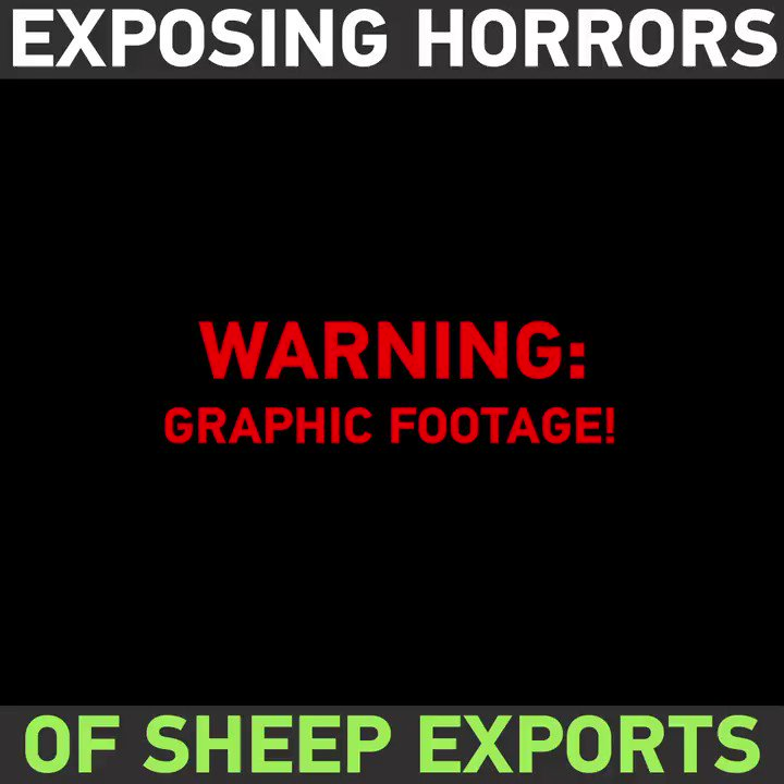 RT @RT_com: WARNING! VERY GRAPHIC: HORROR conditions of sheep on Australia's live export ships https://t.co/Yt47Ya9ftk