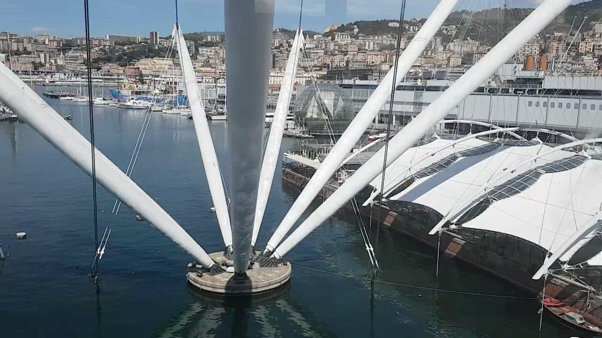 #Genova