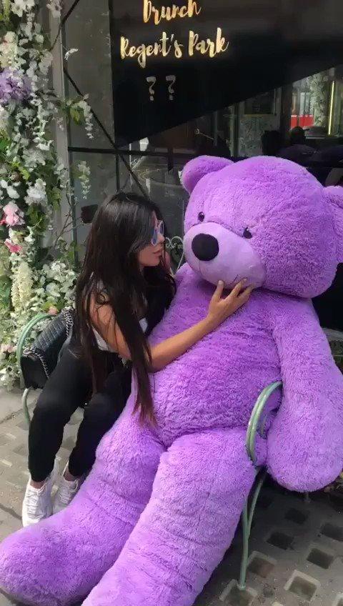 In love ???? Ursinho Ted ???????? https://t.co/ZhkQlng9uI