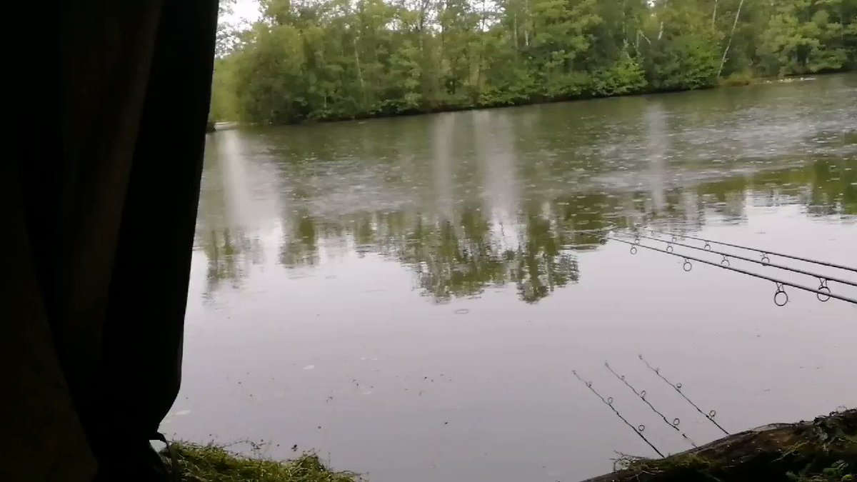 Looking good for a <b>Bite</b>, also got permission for two nights on the bank👌#carpfishing https