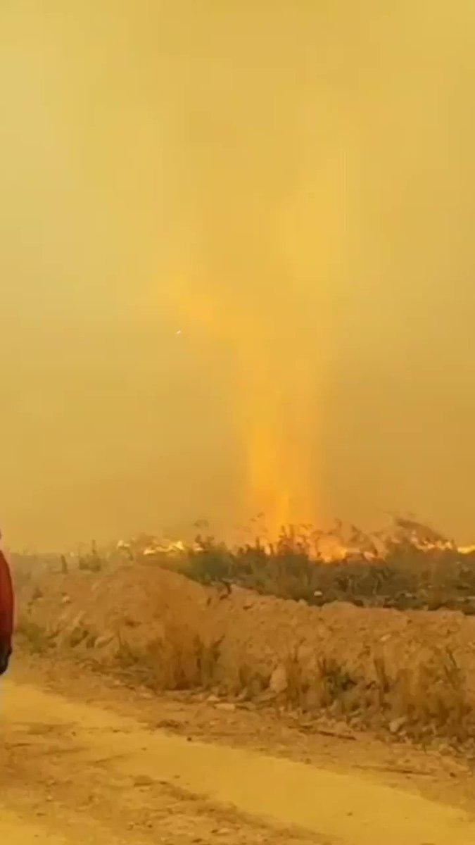 What do you get when fire meets tornado? FIRENADO