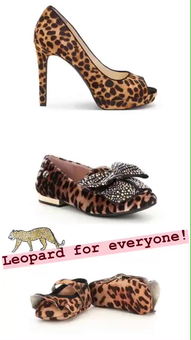 Leopard for Everyone!  https://t.co/iiz0RmLyBR https://t.co/1bmZTKEySz
