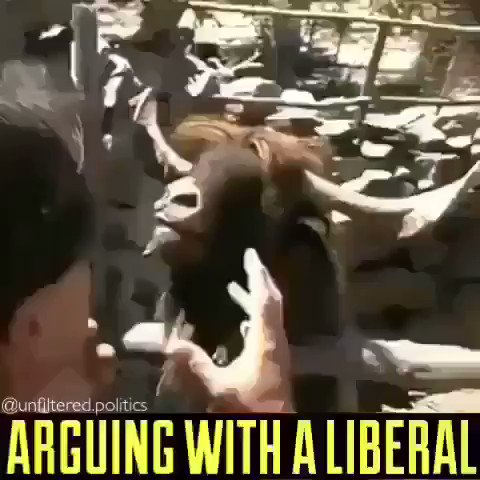 This is what it's like arguing with a liberal in 2019.