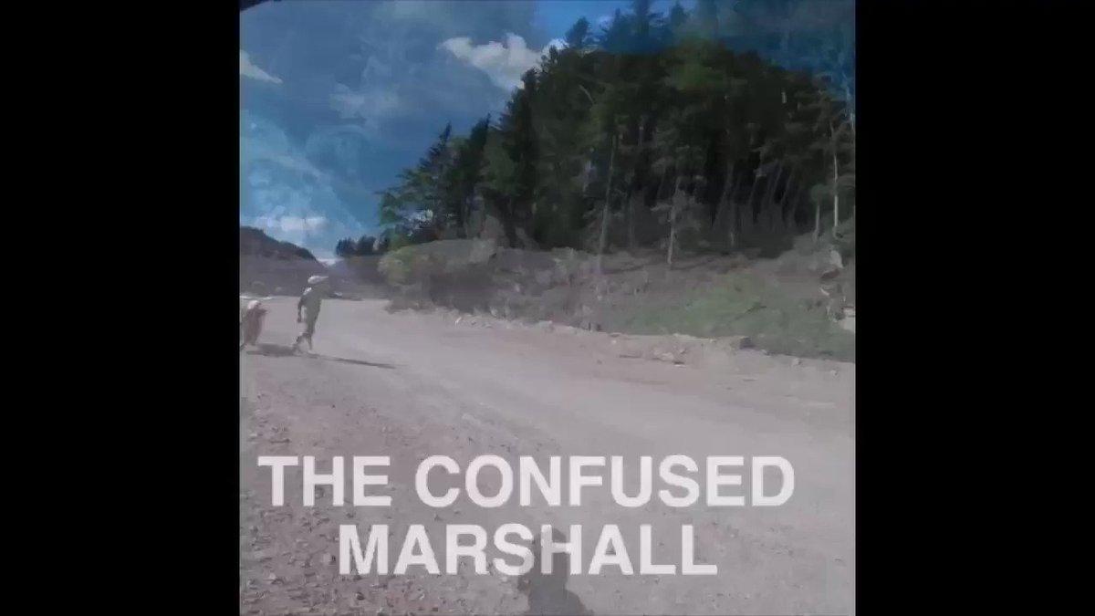 Confused Marshal sending me the wrong way ! @ShotRaceGear @AirohHelmet @ride100percent #rockstarhusky https://t.co/Z0PzyE7bsp