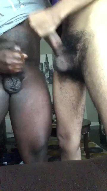 VIDEO – amateurgayvids – 1144016056639512577 on Cock4Cock