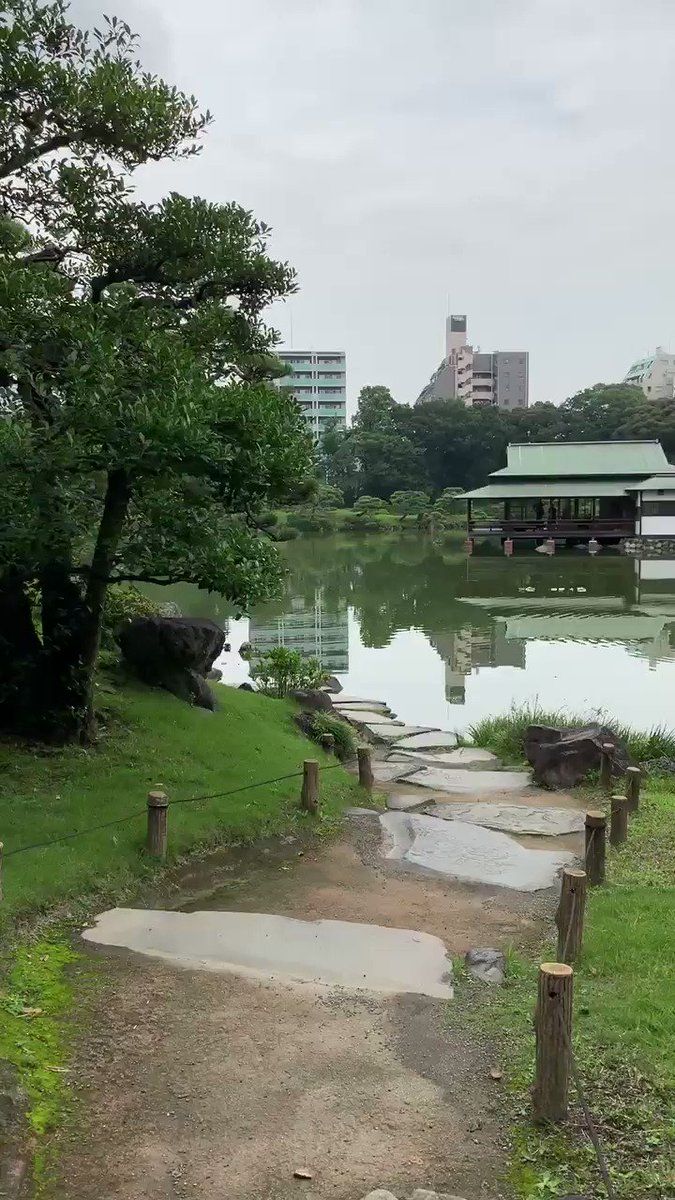 Beautiful Tokyo ????❤️ https://t.co/QlaA6FIgk8