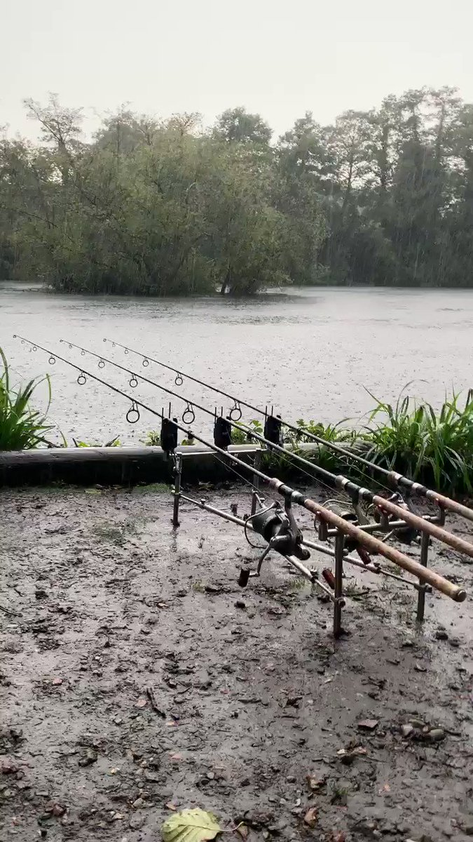 Hope it's worth it! #carpfishing #<b>Thatscarpy</b> https://t.co/8shL9iJVo1