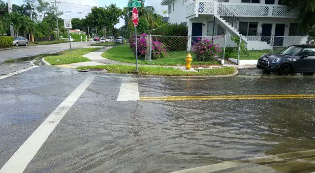 And more sunny day flood video from this morning in the #Miami Shores area.   Again, this is not #KingTide   #sealevelrise #ClimateCrisis via @TropicMotion https://t.co/926WH8wYUm
