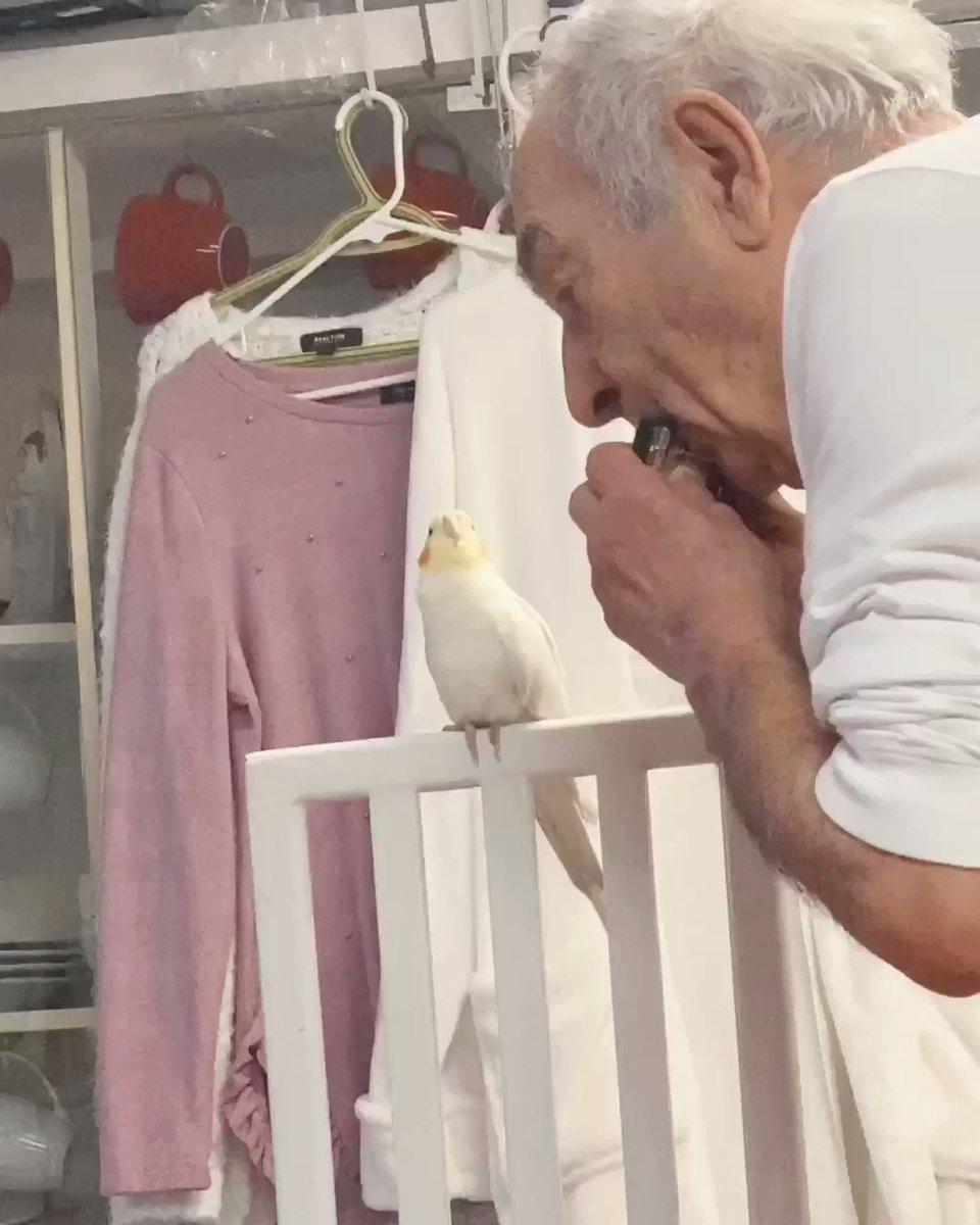 my grandpa: don't bring the bird over  also my grandpa: