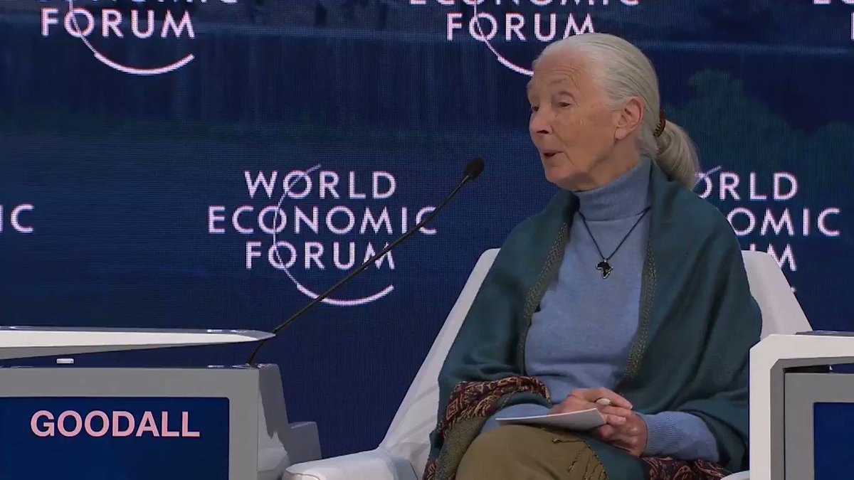 """@algore @GretaThunberg Jane Goodall @ Davos: """"All these [environmental] things we talk about wouldn't be a problem if there was the size of population that there was 500 years ago.""""  The world population 500 years ago is estimated btwn 420 and 540 million —  6.7 billion fewer people than today."""