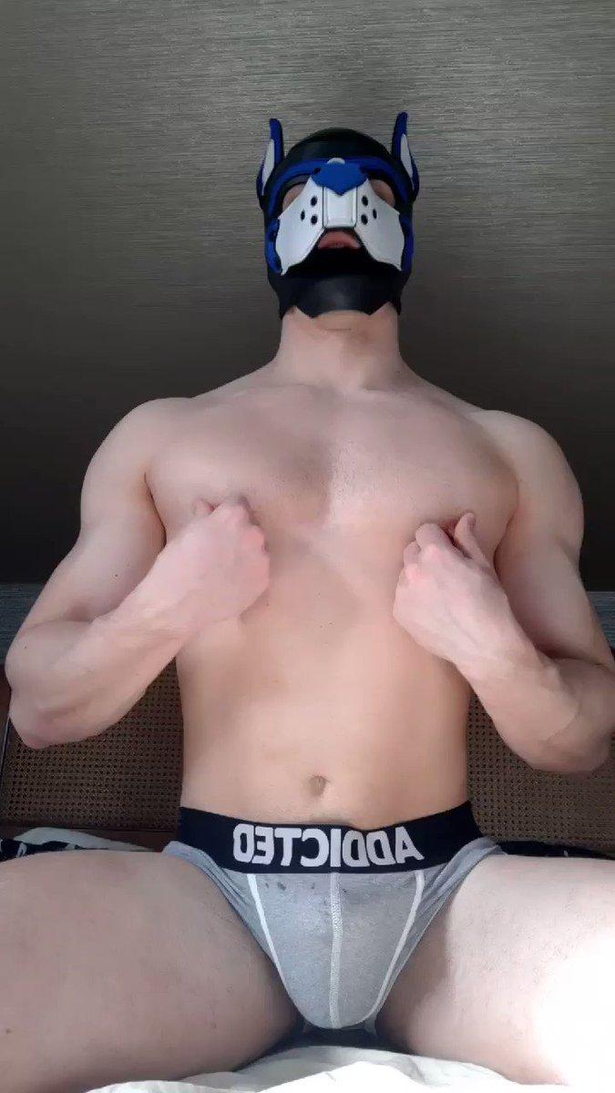 Horny muscle pup cums hands free🍆💦I wanna tie him down and play with his nips until he shoots his load 😈  🔥vid @PupBuday   #EdgeHim #nippleplay #pupplay #gaypup #gaykink #kink #horny #cum #handsfreeorgasm #jizz #MuscleMan #bonercum #amateur #bonerbait