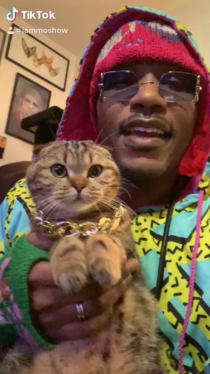 Twitter I need yall to understand this is a Legendary moment. The timelines are officially blessed. This is my cat Lil Parmesan 1st rap ever!