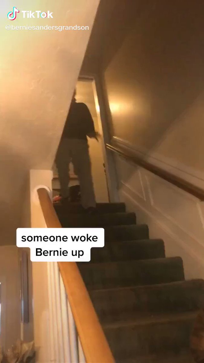 So apperantly Bernie's grandson has a TikTok