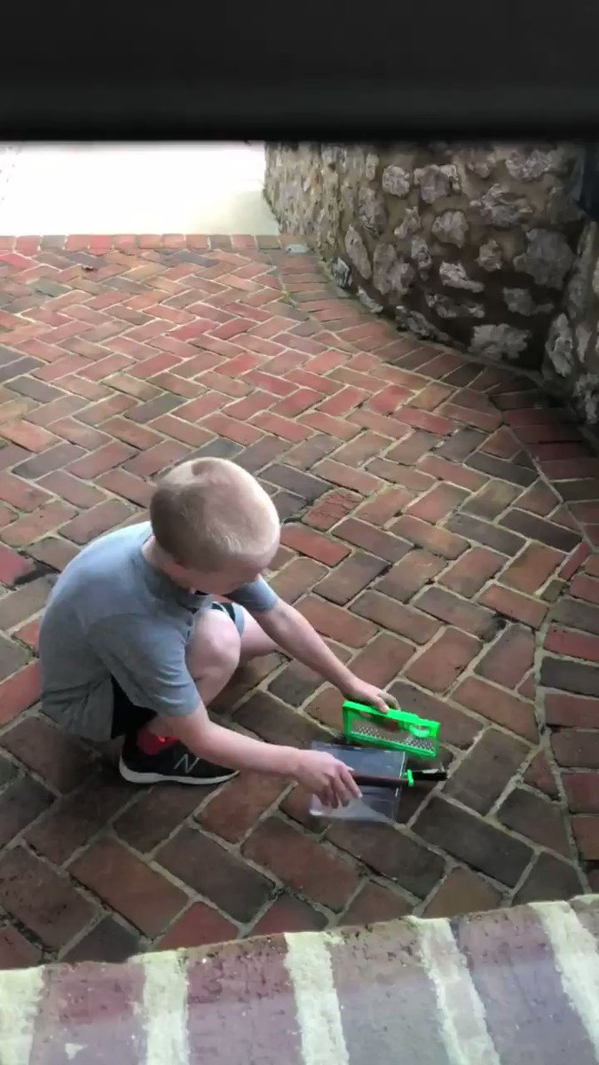 .@KeelanHarvick working on his courage with a dead bird.