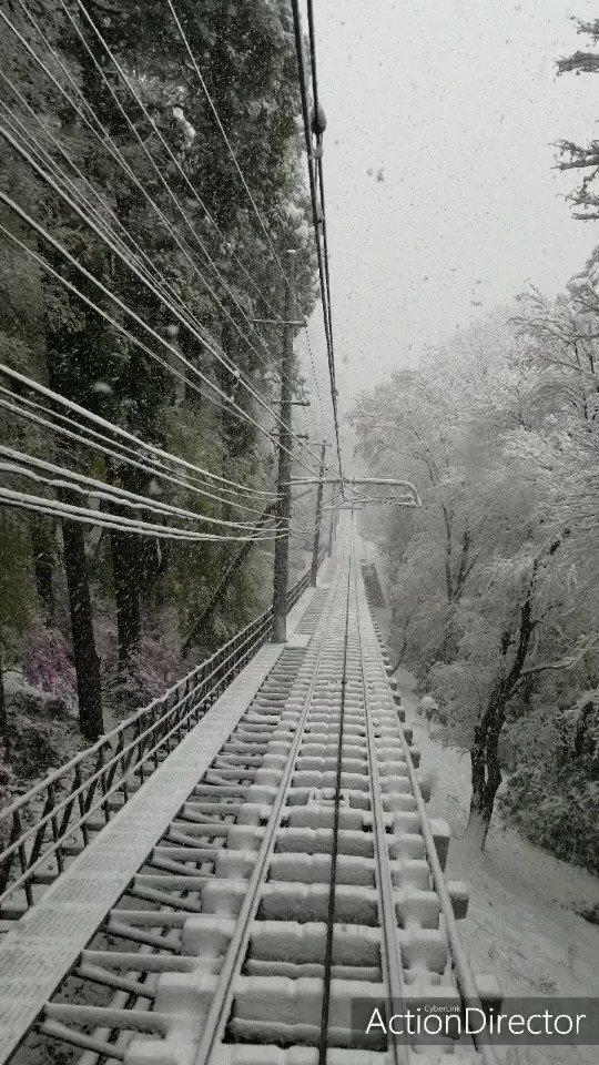 今現在の高尾山をお楽しみください。第2段です。#高尾山 #ケーブルカー #めちゃ雪
