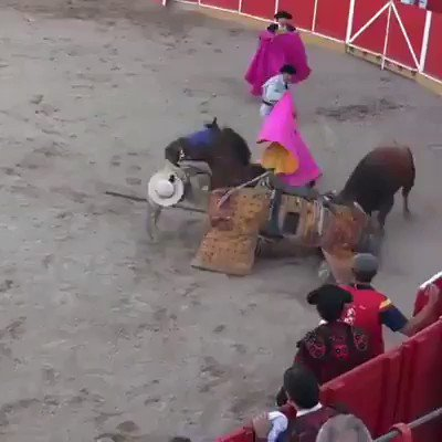 This is called Art? Horses and bulls victims of psychopaths  Before the bullfights the horses are blindfolded and the vocal cords are cut so that they cannot scream in pain. when injured it is left to die.  Imagine the terror and pain that this poor animal feels #BanBullfighting