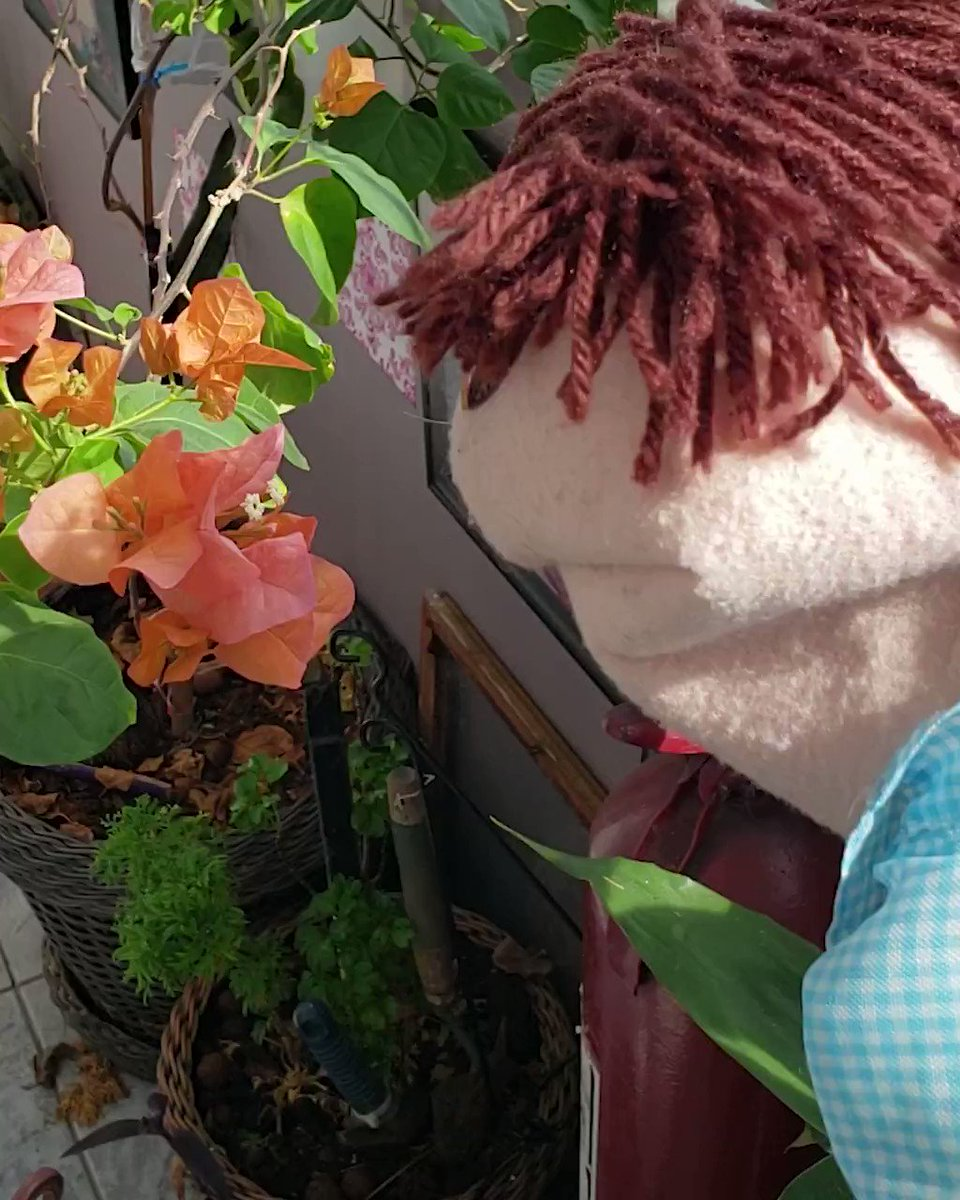 Cuidem bem das flores do seu jardim. Ofereçam um suco ou um café :*
