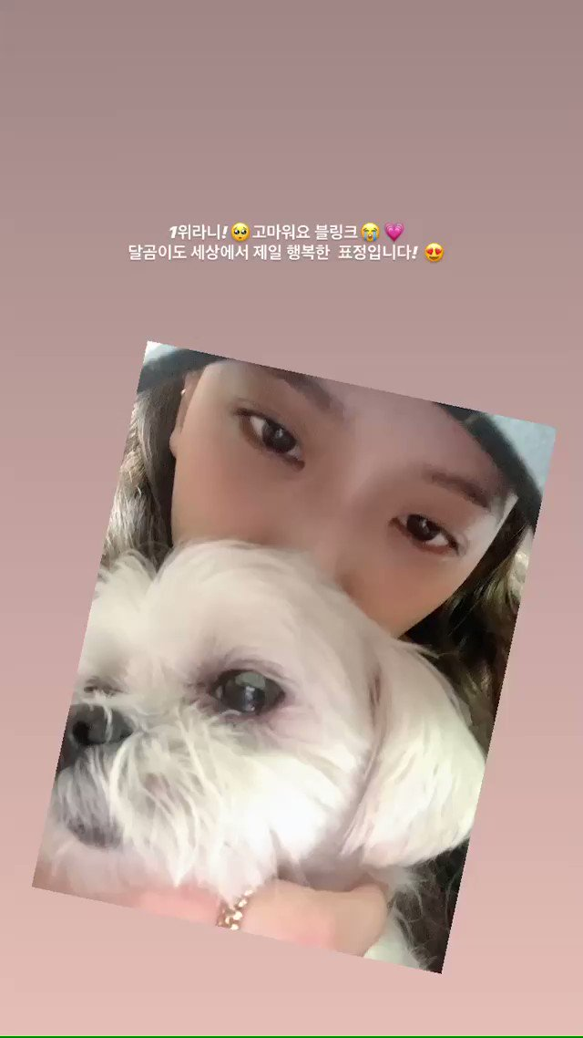 """Chustory """"First place!🥺BLINK thank you😭💗 Dalgom too has the world's happiest expression!😍"""""""
