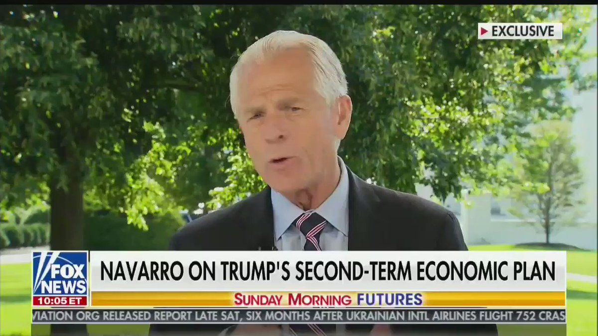 """Peter Navarro, without evidence, pushes a conspiracy theory that China """"hit us"""" with a """"weaponized virus,"""" then adds that """"I don't think it's any coincidence that the first year that China had a down economy is the same year that they're coming after us in all sorts of ways."""""""