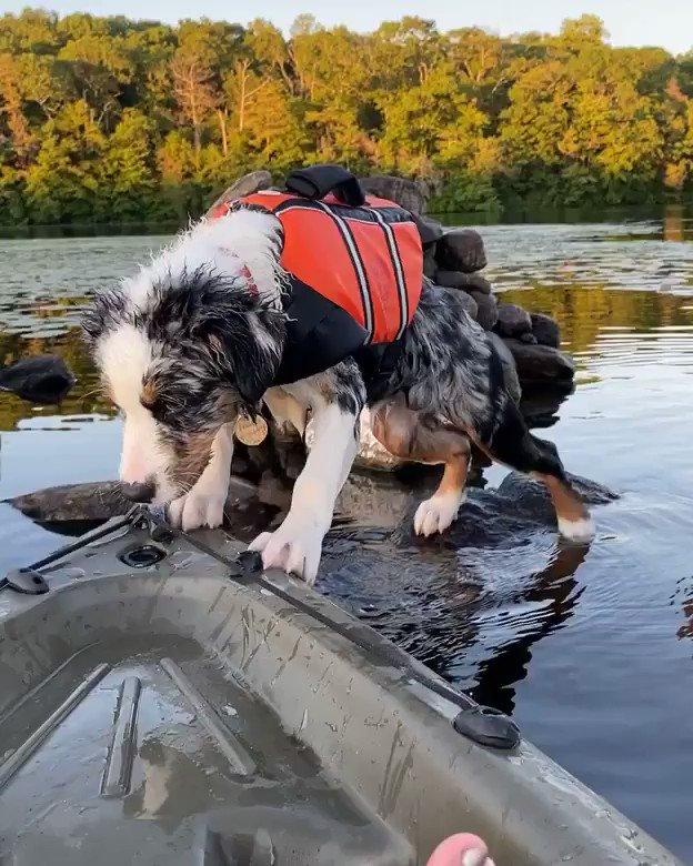 Man overboard!!😱 🎥 IG stanleyaussie