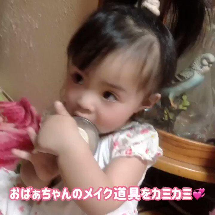 【何でも食べるのね♥️】 #1歳6ヶ月 #女の子 #かわいい #癒し #おもしろ #ユーモア #美少女 #猫 #エキゾチックショートヘア #9ヶ月 #ねこ #ぶさかわ #バイアイ #オッドアイ #動物 #珍しい #孫大好き #アラフィフ #おばぁちゃん が編集者