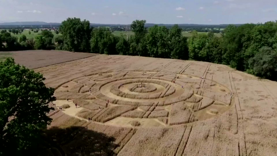 """REUTERS: Bizarre crop circle appears in German field  """"The German town of Paehl attracted many visitors this week after a crop circle suddenly appeared in a wheat field in the area, triggering the curiosity of local tourists."""""""