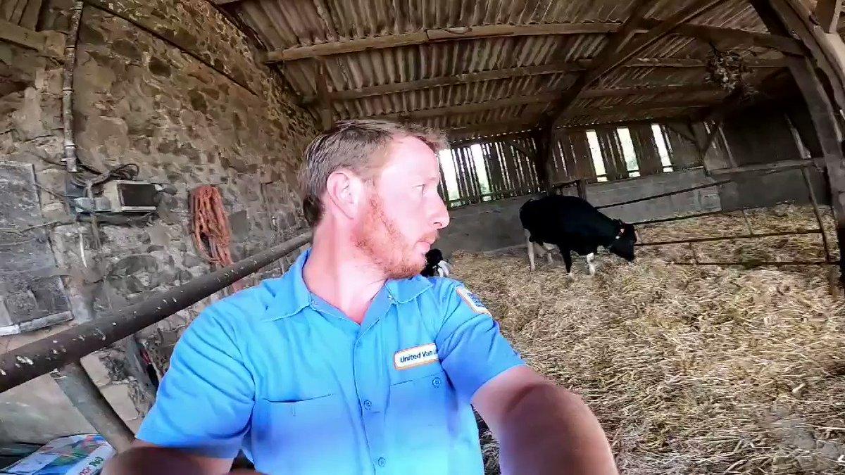 """ATTENTION ⚠   Nouvelle Vidéo aujourd'hui 🎥  """"La séparation du veau et de la vache""""   Est-ce qu'on lui vole son lait ? Est-ce que la vache pleure des jours ? Est-ce qu'elle réclame son veau (et inversement) Toutes les réponses ici 🙂⤵️"""