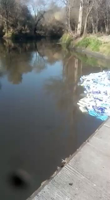 PPE found in a river in Irene, Centurion. Video as received.